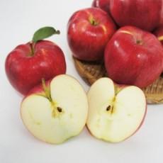 사과 10kg
